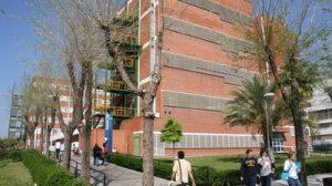 La Universidad de Sevilla toma prestigio en una de las revistas más importantes del mundo.
