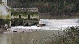 Imagen del río a su paso por el Molino de San Juan el domingo 21 de marzo