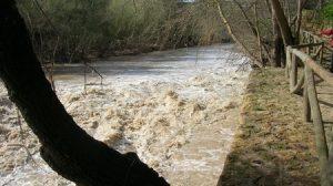 A finales del pasado año el río Guadaíra sufrió varios vertidos contaminantes para sus aguas/SA.