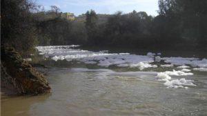 El PP apoya la declaración, pero asegura que el río aún no se encuentra limpio/PPAlcala.