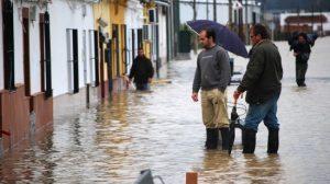 Mientras que en Lora del Río ha sido menor, el nivel del agua en Tocina ha aumentado en comparación con las riadas del pasado Puente de la Inmaculada/Archivo