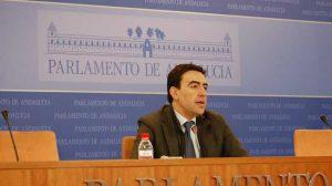 Mario Jiménez, portavoz del grupo socialista en el Parlamento andaluz. /SA
