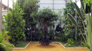 hombre-arbol-escultura