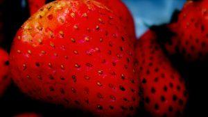 El estudio demuestra que comer fresas es beneficioso para impedir la oxidación de la sangre/brunoc/Flickr.com