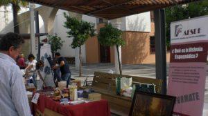En los diversos puestos se podrán encontrar libros, bisutería, artesanía, etc.;donado por las asociaciones participantes en el mercadillo/ Salud Moreno