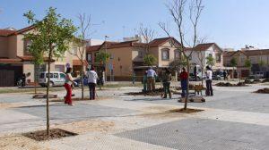 plaza-apis-291111