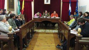 pleno-ayuntamiento-carmona-291111