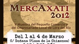 cartel-mercataxi-2012