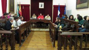 pleno-municipal-150212