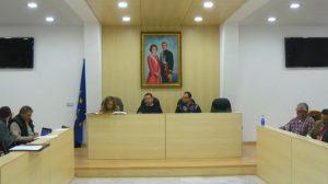 pleno-mairena-alcor-060312