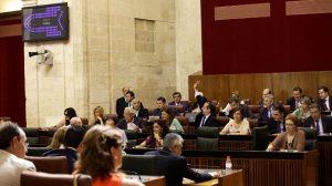 pleno-extraordinario-parlamento-250712