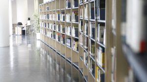 biblioteca-jose-saramago