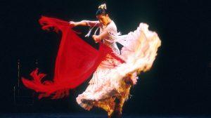expo-color-del-flamenco-280812