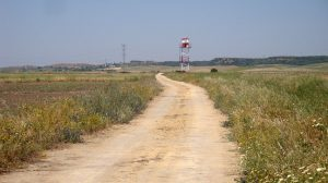 caminos-deslinde-mairena-alcor-280912