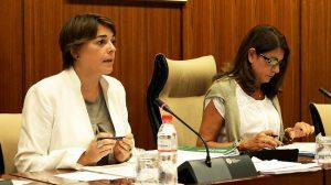 elena-cortes-comision-parlamento