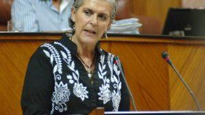La secretaria de Educación del PSOE de Andalucía, Araceli Carrillo, permanecía en activo. / Sevilla Actualidad