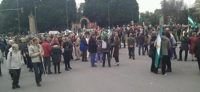 manifestacion-28f-sevilla-2013