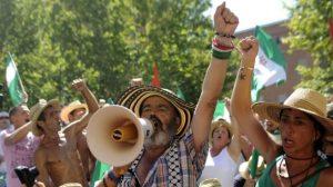El parlamentario y alcalde de Marinaleda, Juan Manuel Sánchez Gordillo, declara el 4 de abril por 'ocupar' la finca de Las Turquillas / Sevilla Actualidad