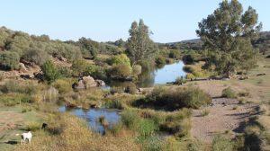 El valle del río Viar, a la altura del embalse de Los Melonares en las primeras estribaciones de la Sierra Morena / Juan Carlos Romero