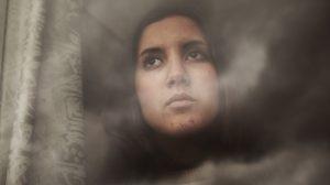 La Fundación Tres Culturas acoge desde este jueves al 3 de mayo la exposición 'Semillas del nuevo Marruecos' / Sevilla Actualidad