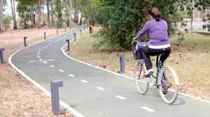 UPObici pondrá a disposición de la comunidad universitaria de la Olavide bicicletas en servicio de préstamo / Sevilla Actualidad