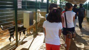 El Consejo de la Infancia visitó la Fundación Benjamín Mehnert./Alcalá de Guadaíra
