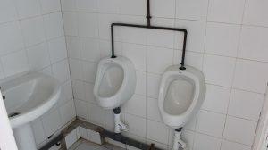 bano-colegio-lora-tamayo