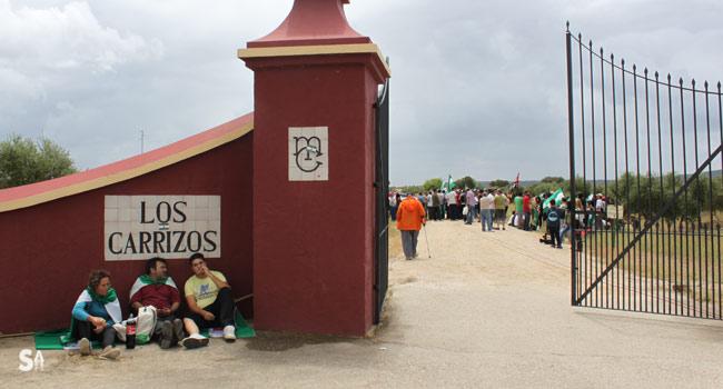 Los manifestantes del SAT accedieron unos metros al interior de la finca Los Carrizos, conforme a lo acordado por Mario Conde y Diego Cañamero para permitir la acción / Juan C. Romero