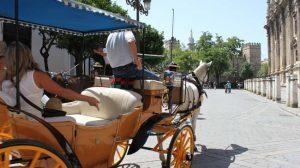 coche-caballos-turistas-turismosevilla-flickr
