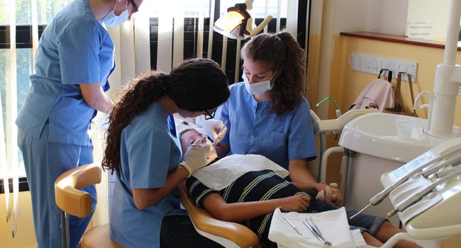 odontologia-programasaludbucodental