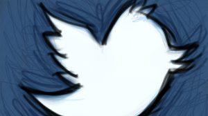 pajaro-twitter-shawncampbell-flickr