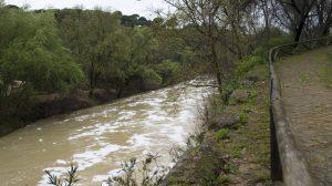 vertido-guadaira-14-3-2011-algarrobo