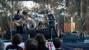 2012 Tomate y Blues de Los Palacios y Villafranca 4