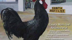feria-gallina-utrera