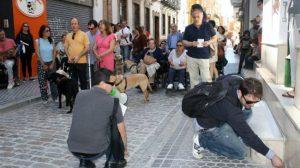 garcia-paseo-personas-discapacidad