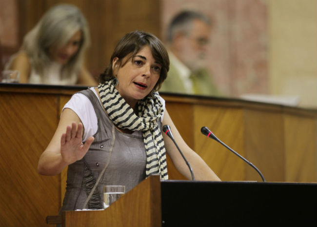 elena-cortes-parlamento