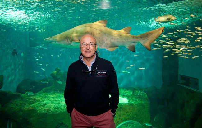 acuario investigadores