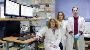Grupo-de-investigacion-Traduccion-Local-Sinaptica-en-laboratorio-de-la-F.-Medicina-US