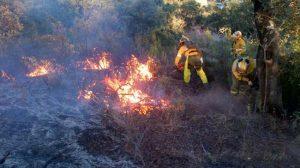 incendio-forestal-el-ronquillo