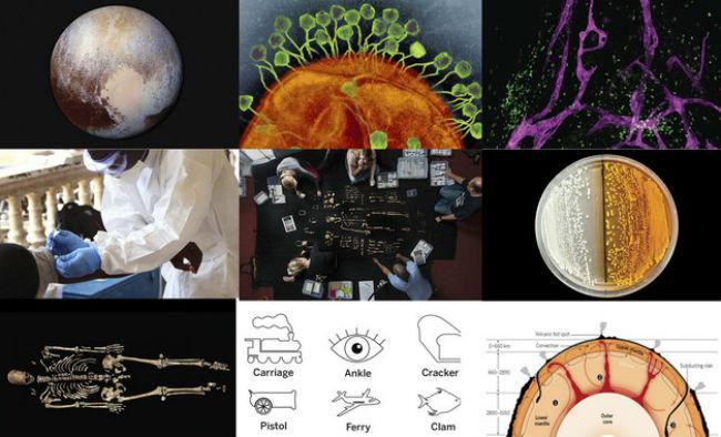 mejor-ciencia-2015-science