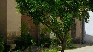 sala-santa-ines-interior-junta