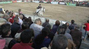 Feria-Agroganadera-y-del-Flamenco-de-Los-Palacios-y-Vfranca-9