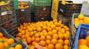 naranjas-robos