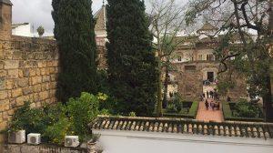 patio-leon-alcazar