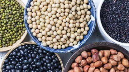 Diferentes-legumbres-en-recipientes--Disenado-por-Freepik
