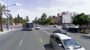 avenida-palmera
