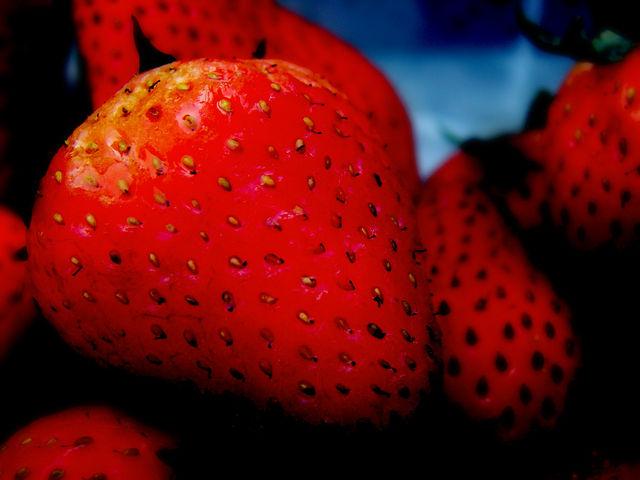 fresas-brunoc-flickr