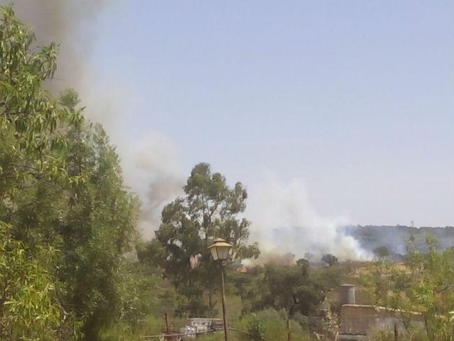 incendio-forestal-madrono-junio17