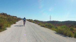 bicicletas-sevilla