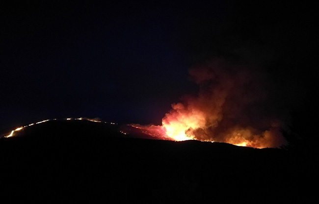 incendio-guadalcanal-francisco-arellano